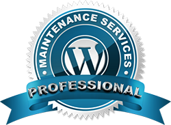 professional web maintenance